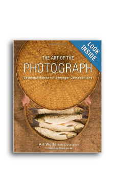 Art-Wolf-Art-of-the-Photograph-Cover