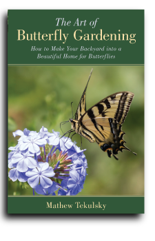 Butterfly Gardening cover for Book Publishing Consultant Peter Beren