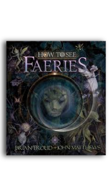 How to see Faeries cover for Book Publishing Consultant Peter Beren