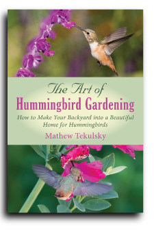 Tekulsky Hummingbird cover Book Publishing Consultant Peter Beren